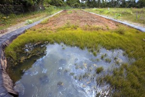 Orange County Soil Remediation